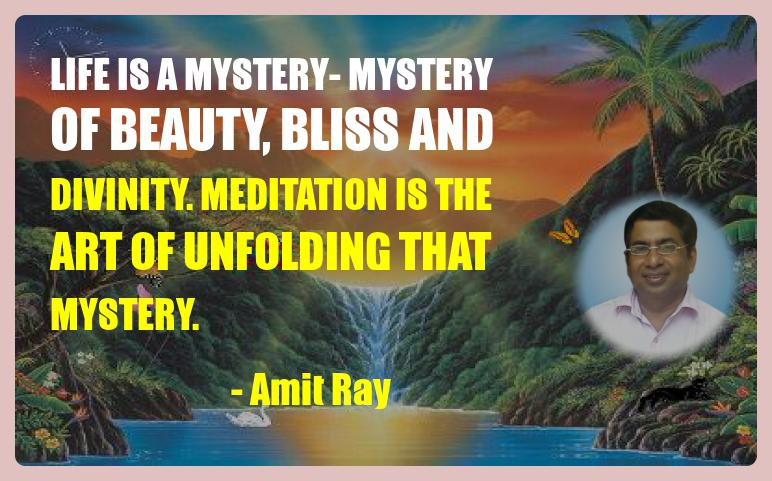 life_is_a_mystery-_mystery_of_amit_ray_quote_40